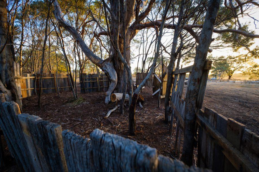 freycinet Paintbal, paintball tasmania, coles bay, adventure tourism