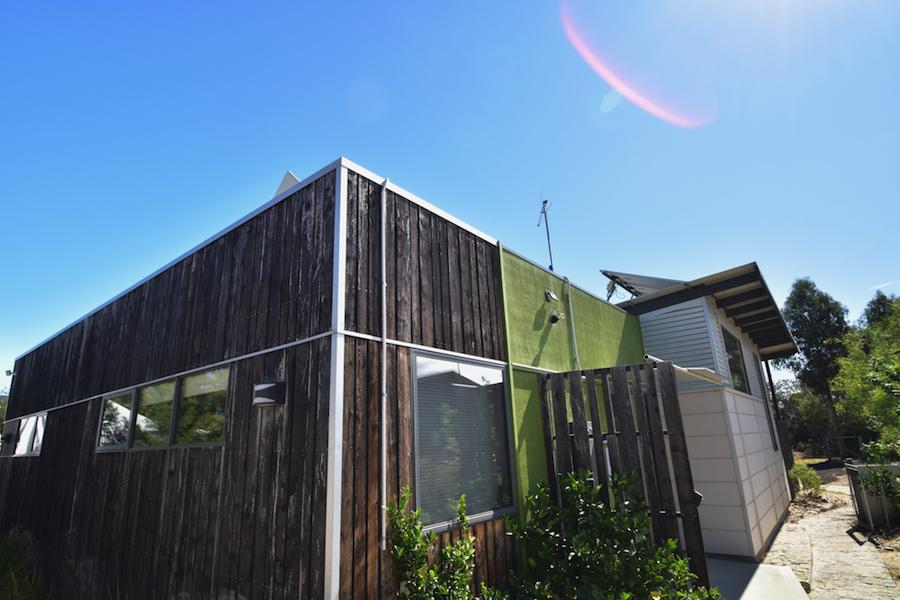 Oystercatcher, Coles Bay, Great Eastern Drive, Freycinet